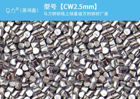 高碳钢丝切丸CW2.5图片型号