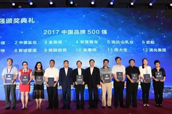 """马力钢砂祝贺武船荣登""""2017中国品牌500强"""""""